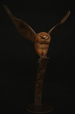 Flying Owl 10/12