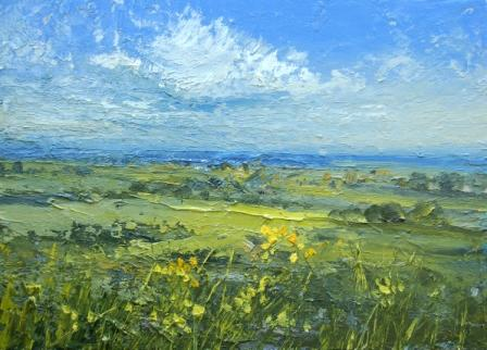 Irish Artist Colin CARRUTHERS - Rape Seed