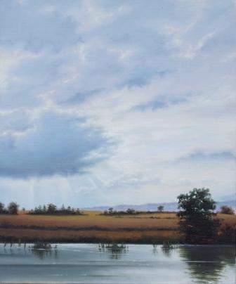 Irish Artist Laurence O'TOOLE - Bagenalstown Canal II